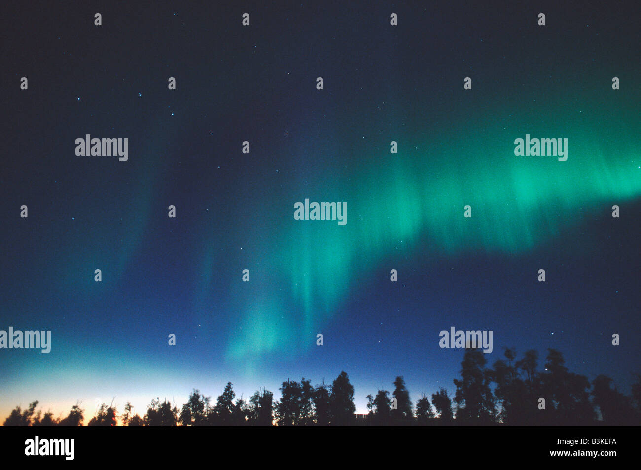 Northern Lights or Aurora Borealis Tangle Lake Alaska USA - Stock Image
