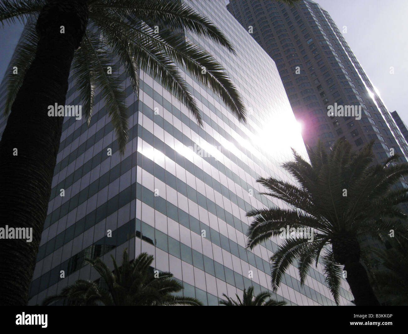 LOS ANGELES  skyscrapers in the financial area of the city - Stock Image