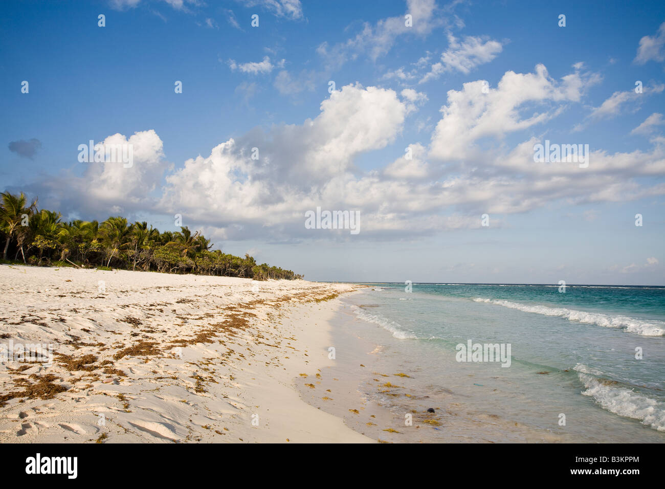 Deserted Beach: A long empty white sand beach in the sun just north of Tulum Tulum Quintana Roo Mexico - Stock Image