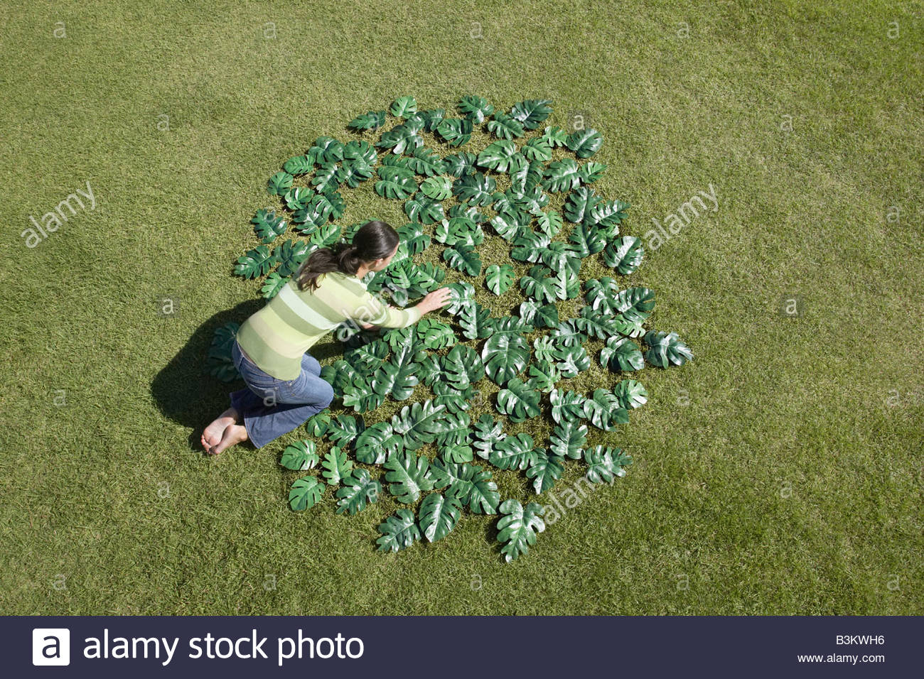 Woman placing green leaves in circle - Stock Image