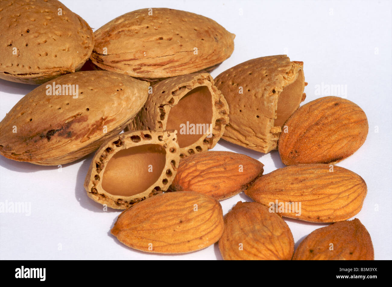 A closeup of almonds in their shells, cracked almond shells and almonds - Stock Image