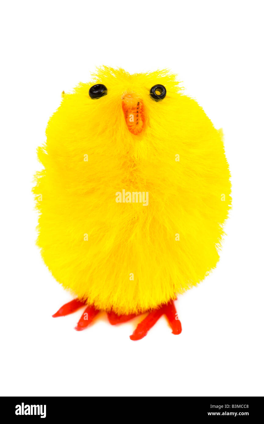 Yellow easter chick isolated on a white background - Stock Image