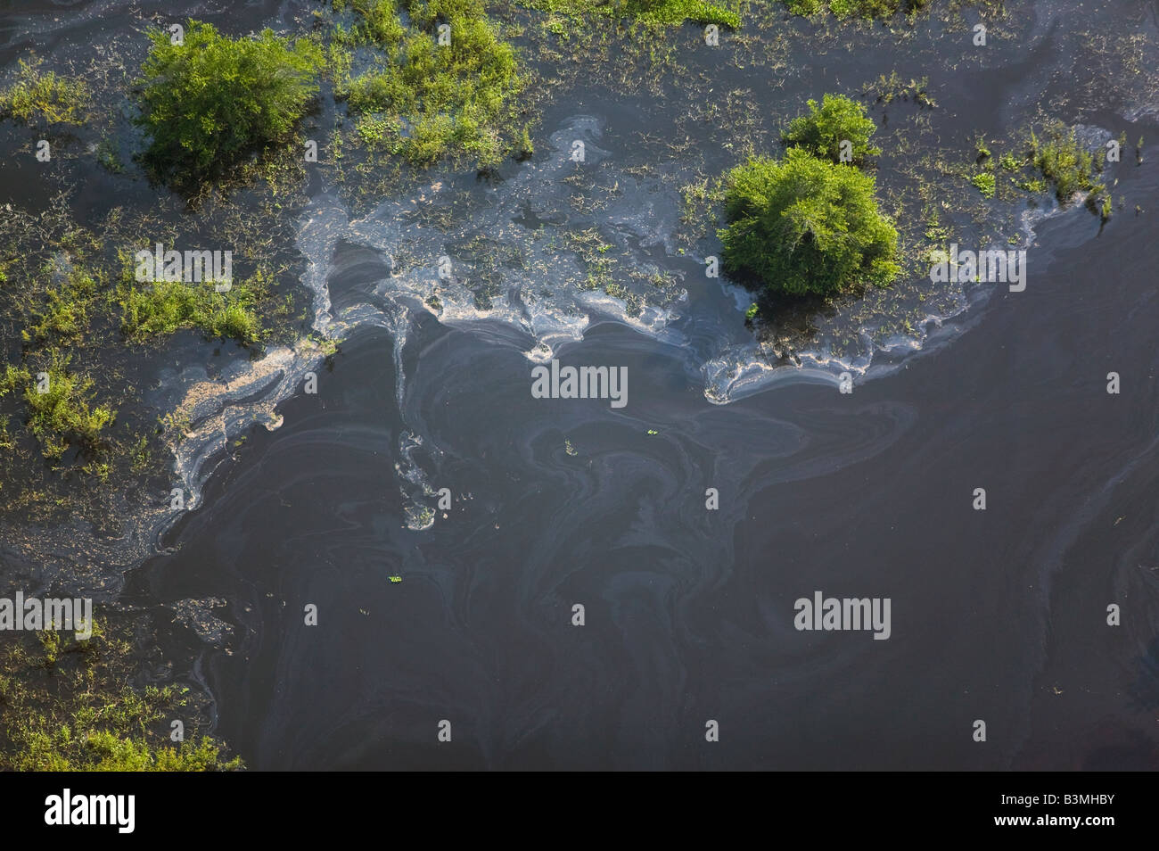 aerial above water pollution in Mexico - Stock Image