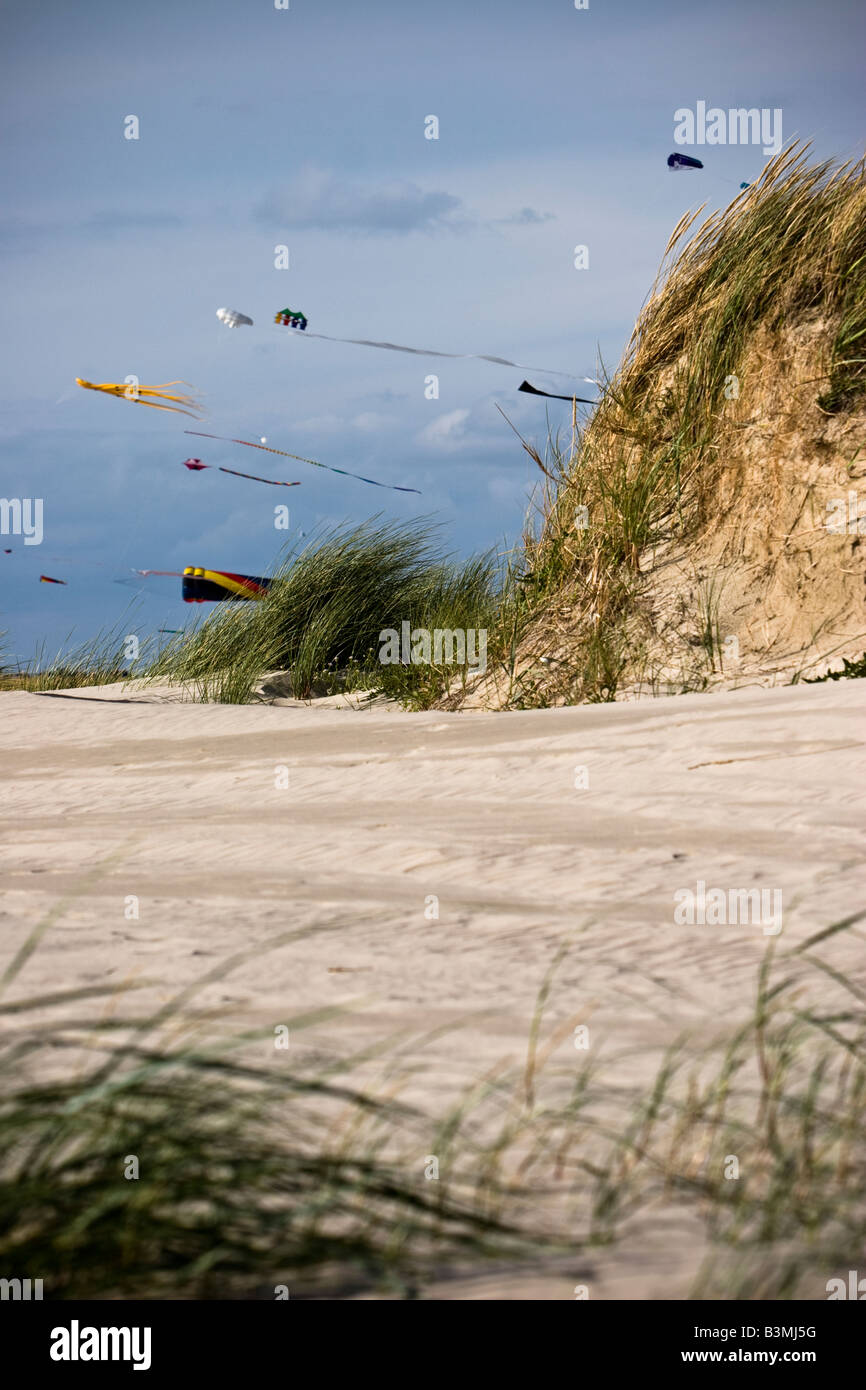 Kites fly on the beach at St. Peter Ording, Schleswig-Holstein, North Germany - Stock Image