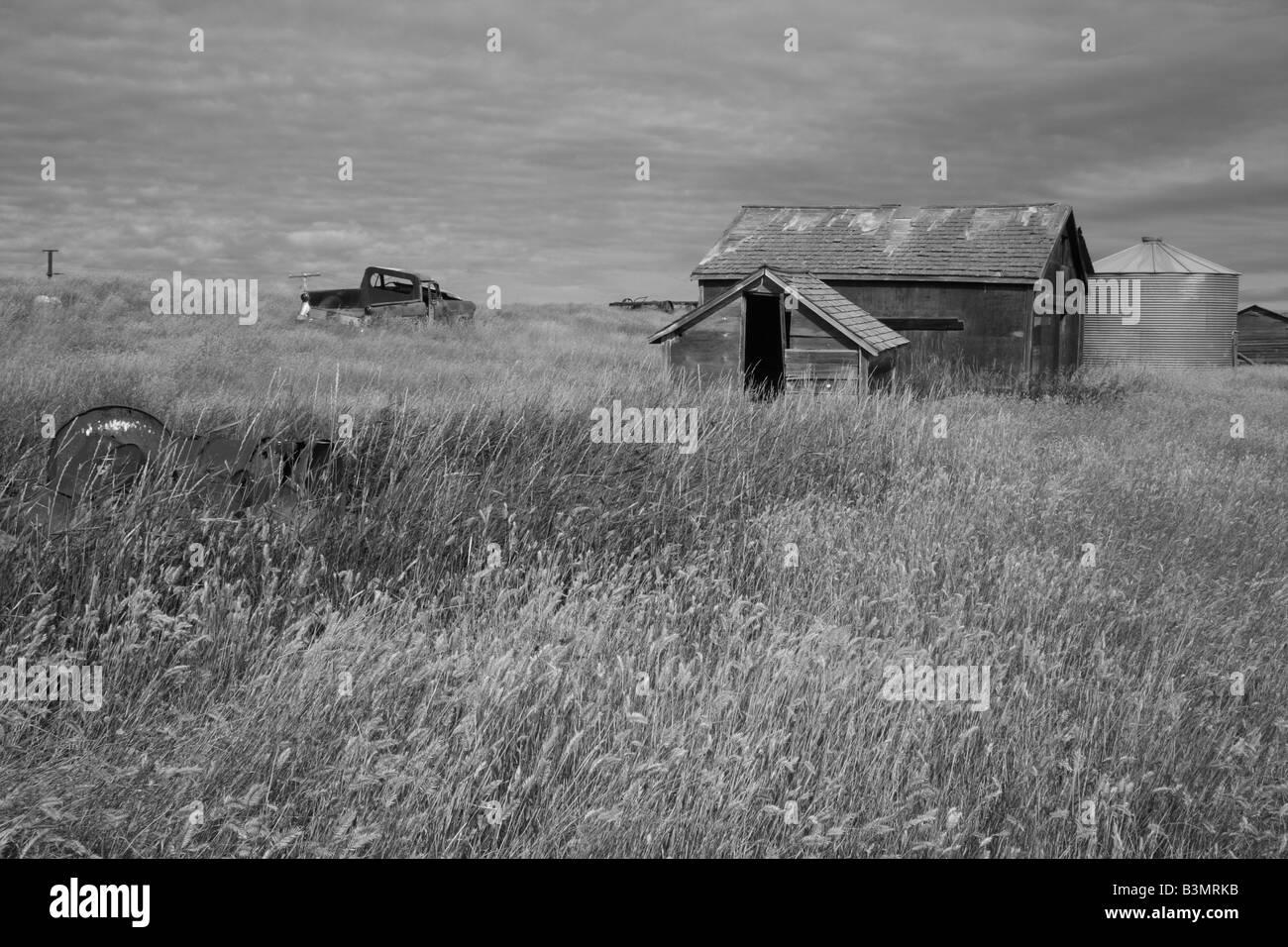 Abandoned Farm Sheds Stock Photos & Abandoned Farm Sheds