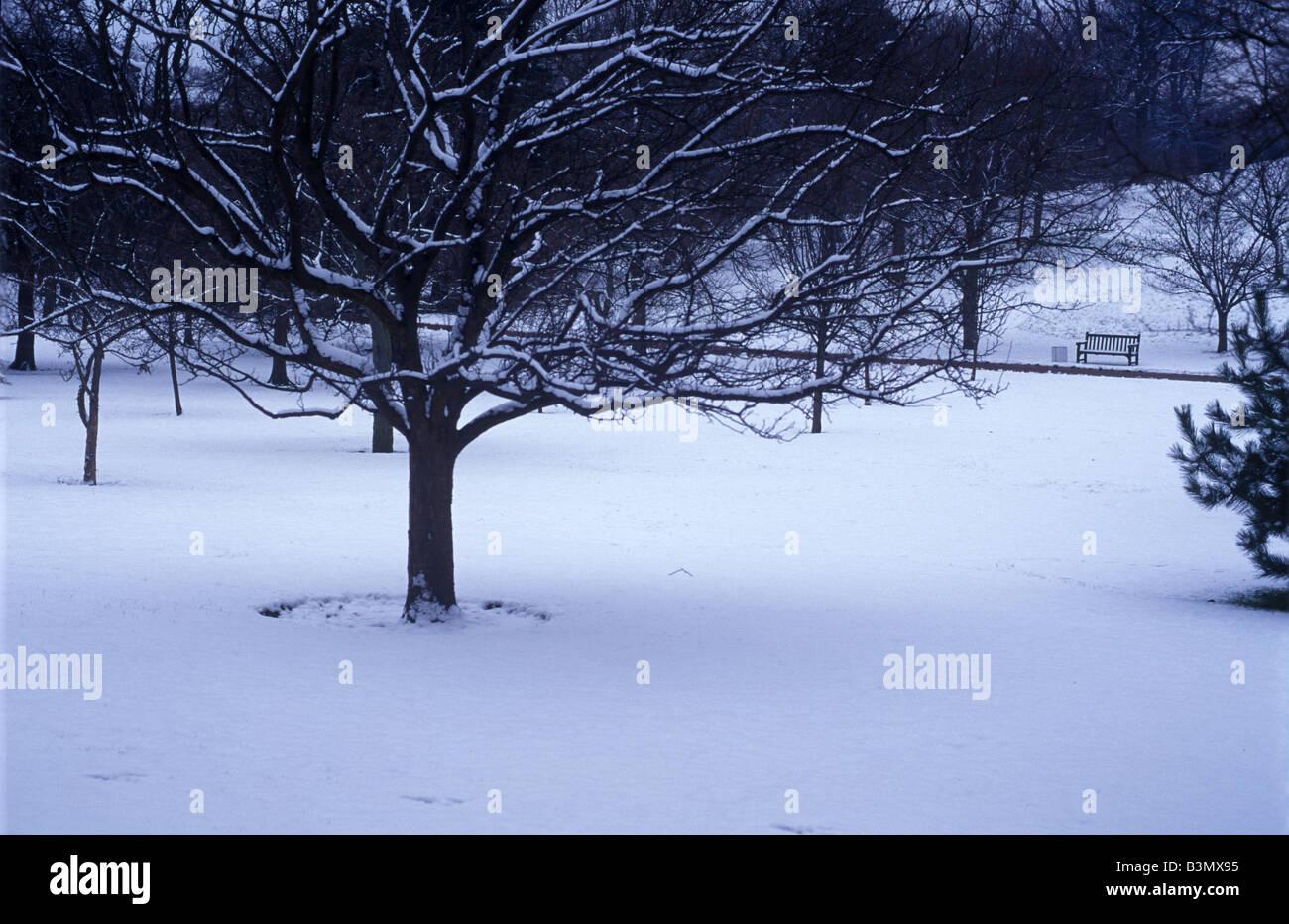pristine snow in botanic gardens Edinburgh Stock Photo