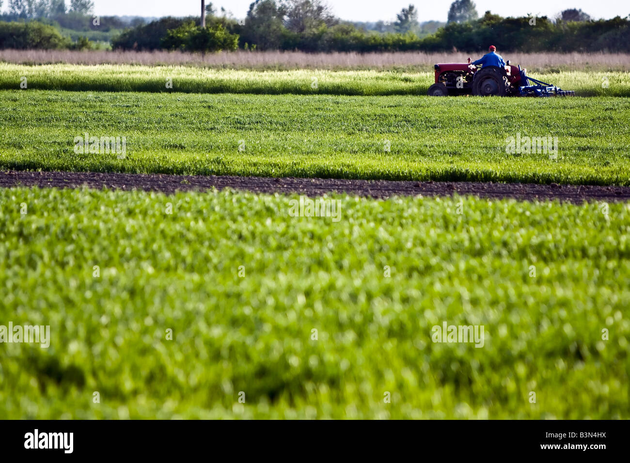 Farmer working with tractor on an agricultural field in spring - Stock Image