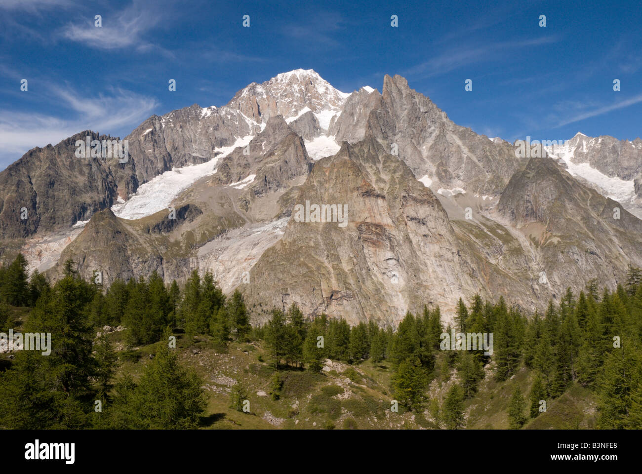 Alpine conifers dot the terminal moraine of the Miage Glacier with the Mont Blanc Massif behind. - Stock Image
