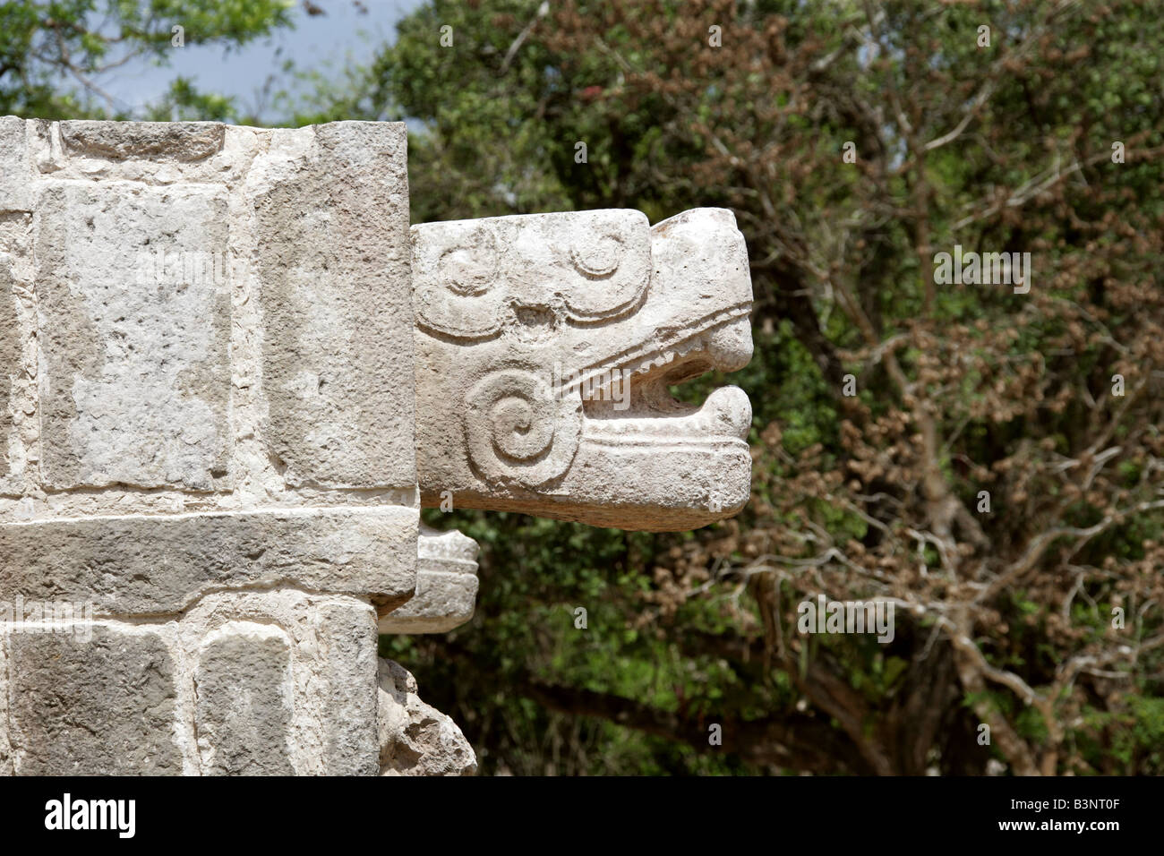 Detail of Serpent Head Carving on the Platform of the Eagles and Jaguars, Chichen Itza Archaeological Site, Yucatan, Stock Photo