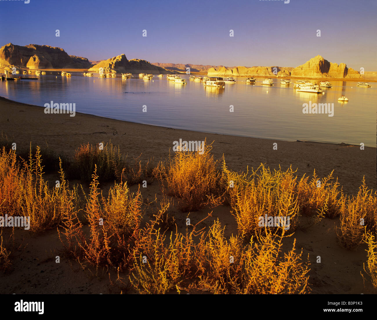 Boats at Wahweap Marina Lake Powell Utah - Stock Image