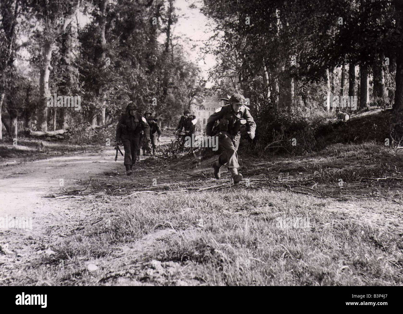 World War II Invasion of France Operation Overlord British infantry advancing through the woods near Troarn during Stock Photo