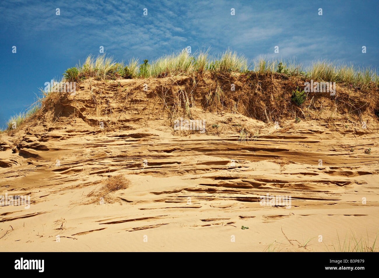 Llangennith Burrows Gower West Glamorgan South West Wales Stock Photo