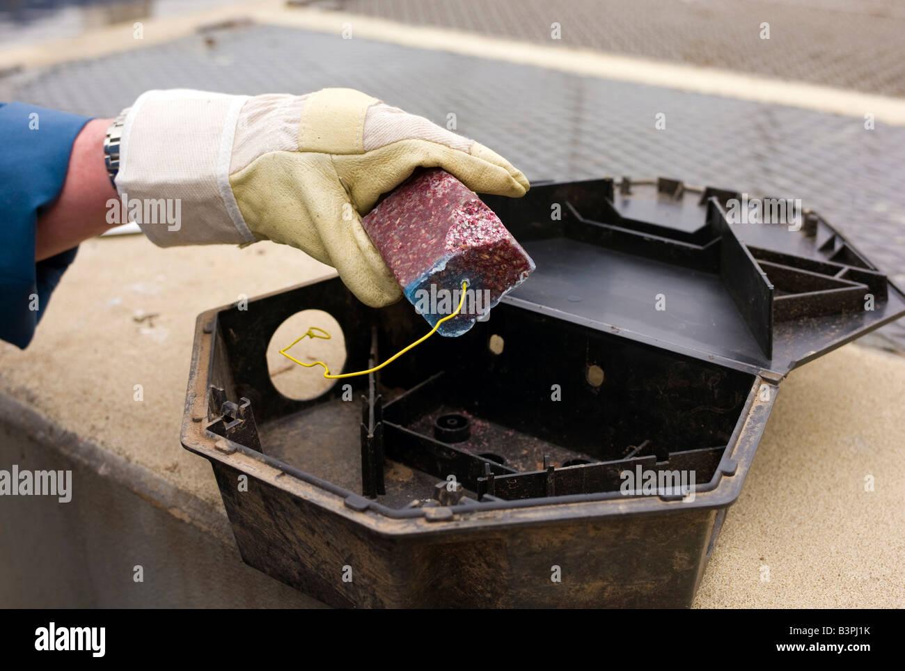 how to build a rat trap car