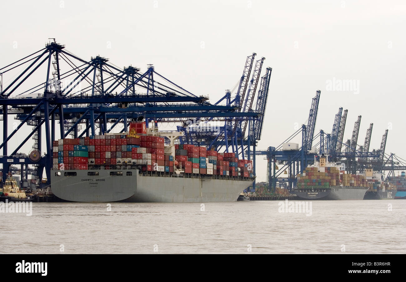 container ships being loaded at Felixstowe docks UK - Stock Image