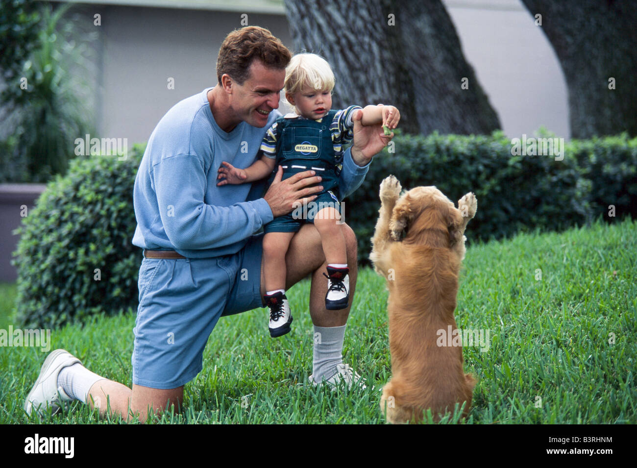 Father and young son play with family dog, Miami - Stock Image