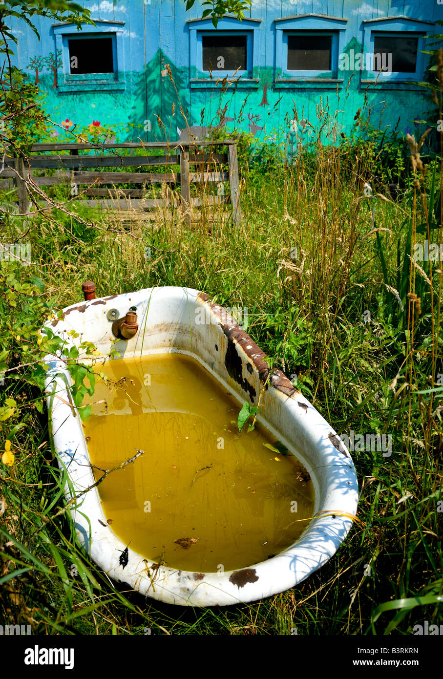 A corroded old bathtub filled with dirty water sits in a field near ...