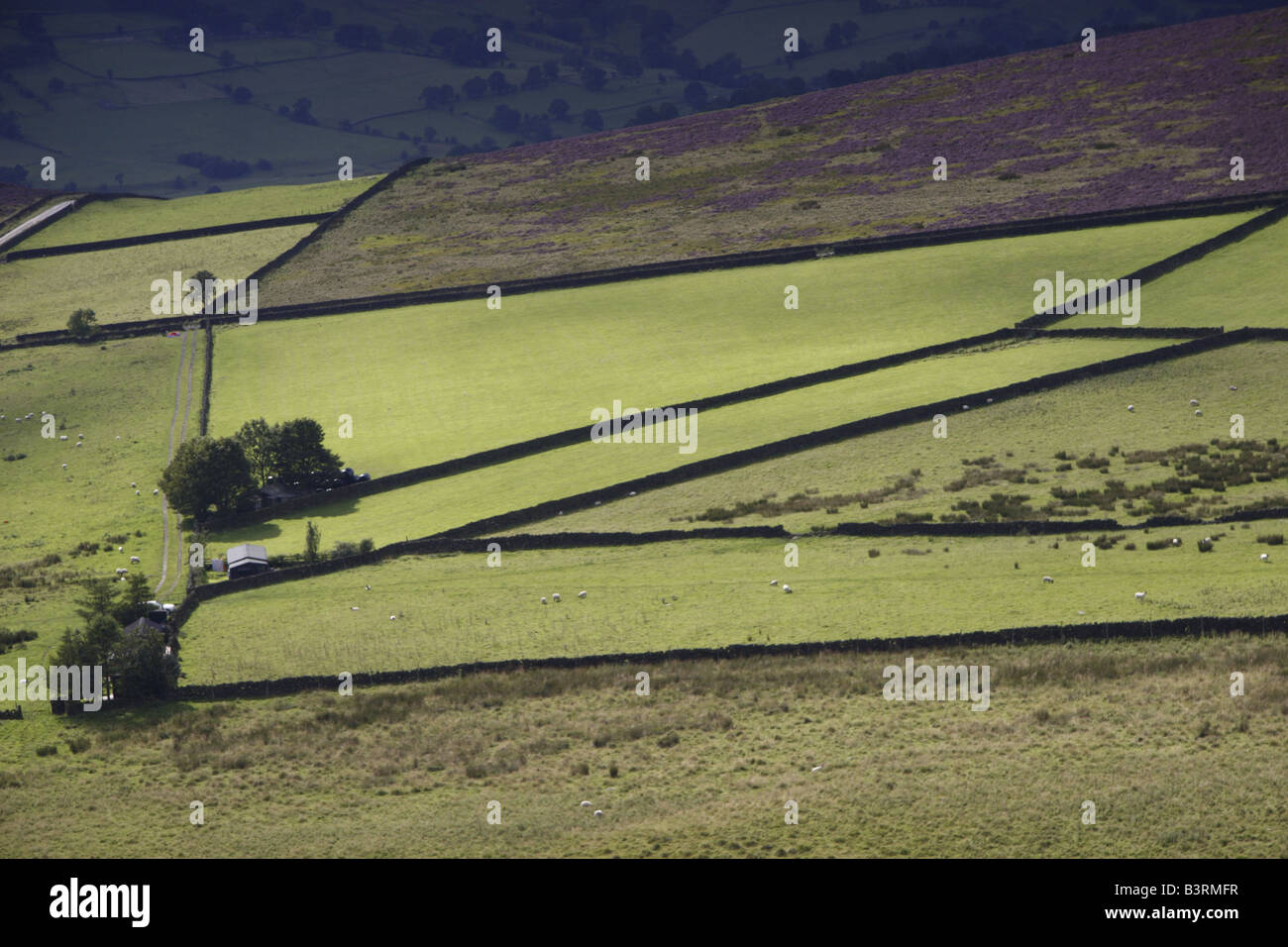 Field Patterns in Peak District Stock Photo