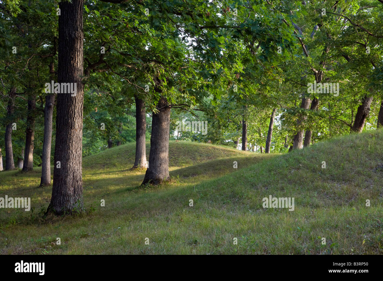 ancient Native American burial mounds, Effigy Mounds