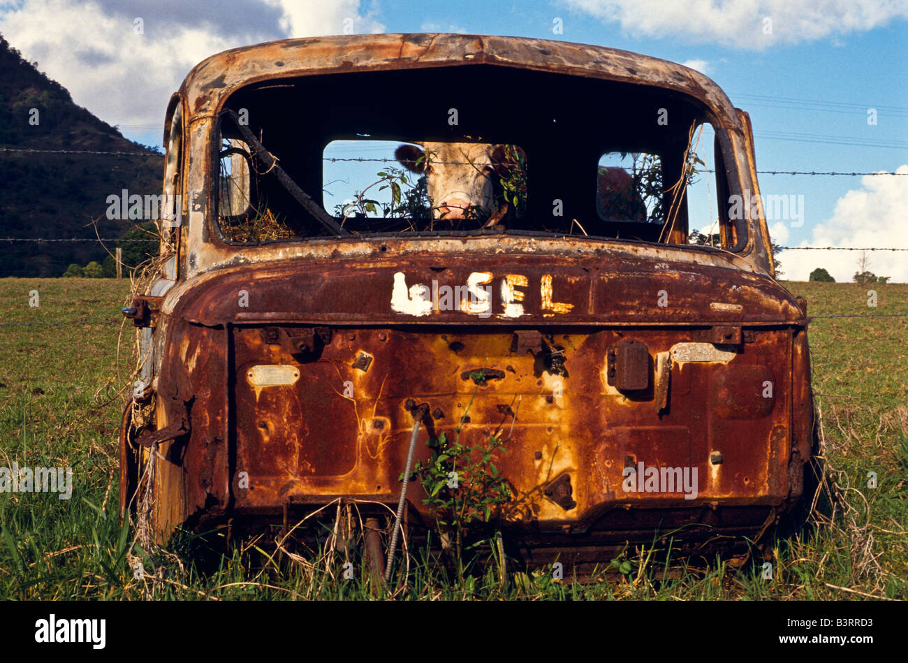 Old Rusted Car Sale Sign Stock Photos & Old Rusted Car Sale Sign ...