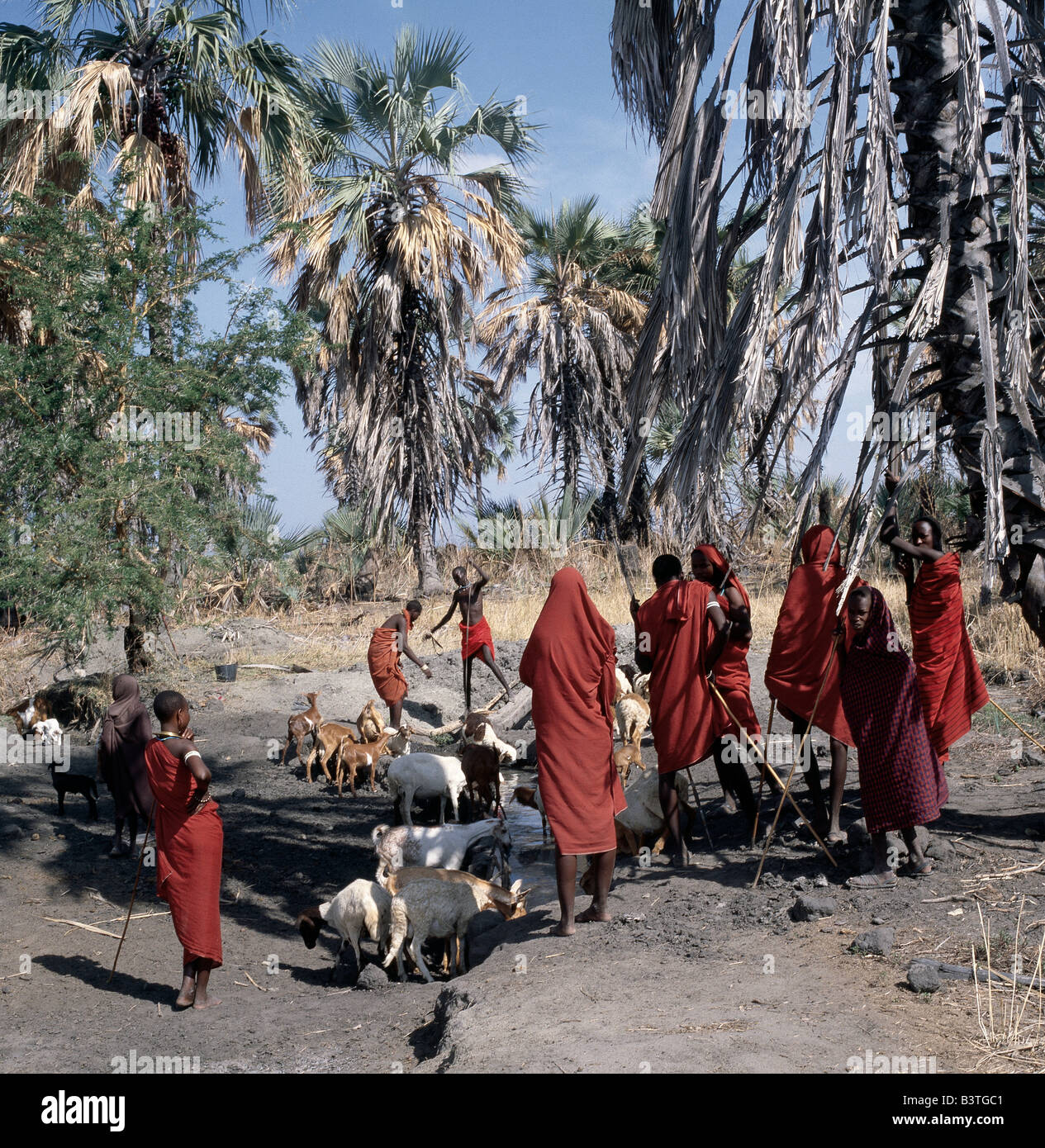 Tanzania, Northern Tanzania, Manyara. A group of red-clad Datoga people gather around water wells situated beside - Stock Image