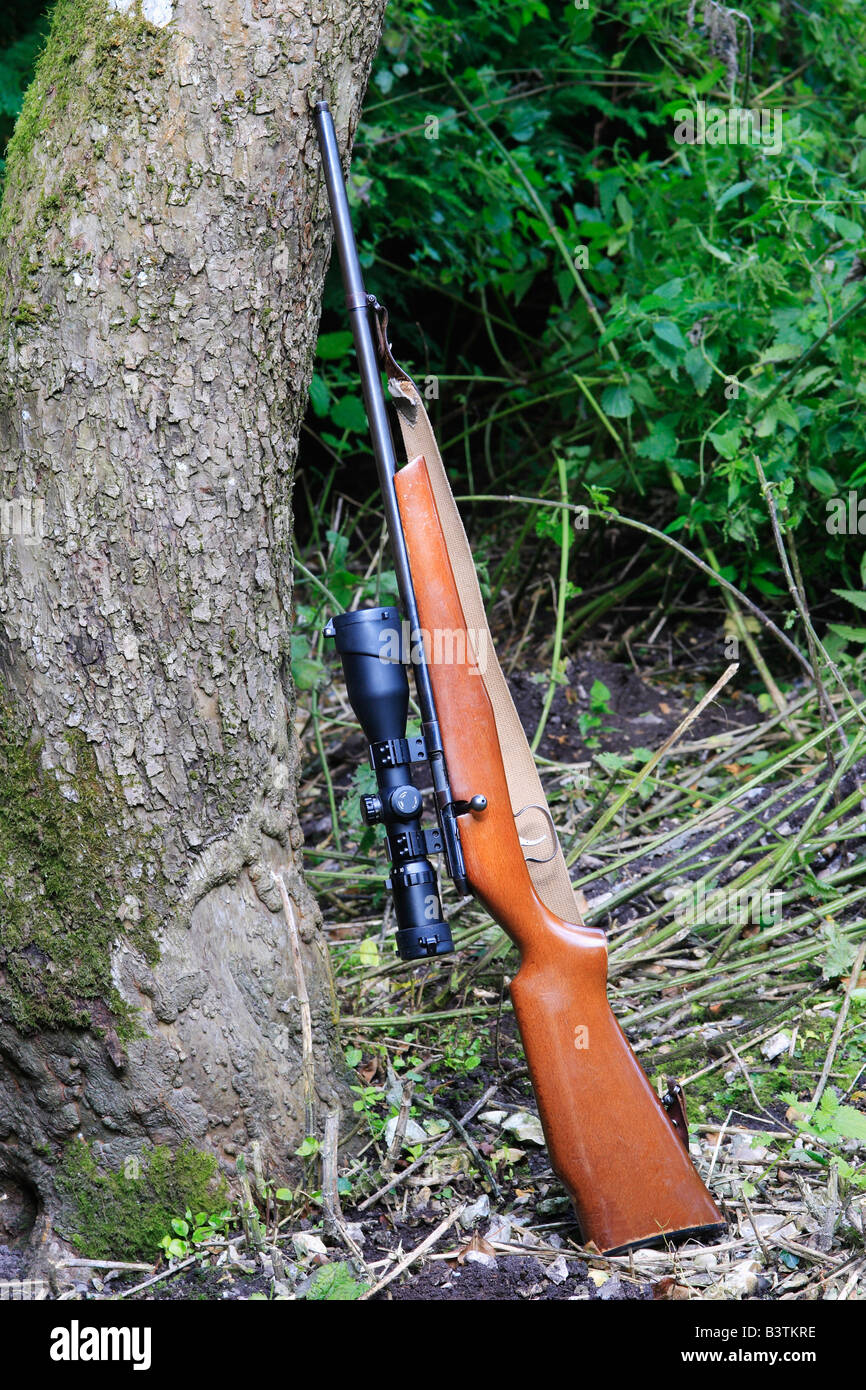 .22 Calibre Hunting Rifle, with Scope. - Stock Image