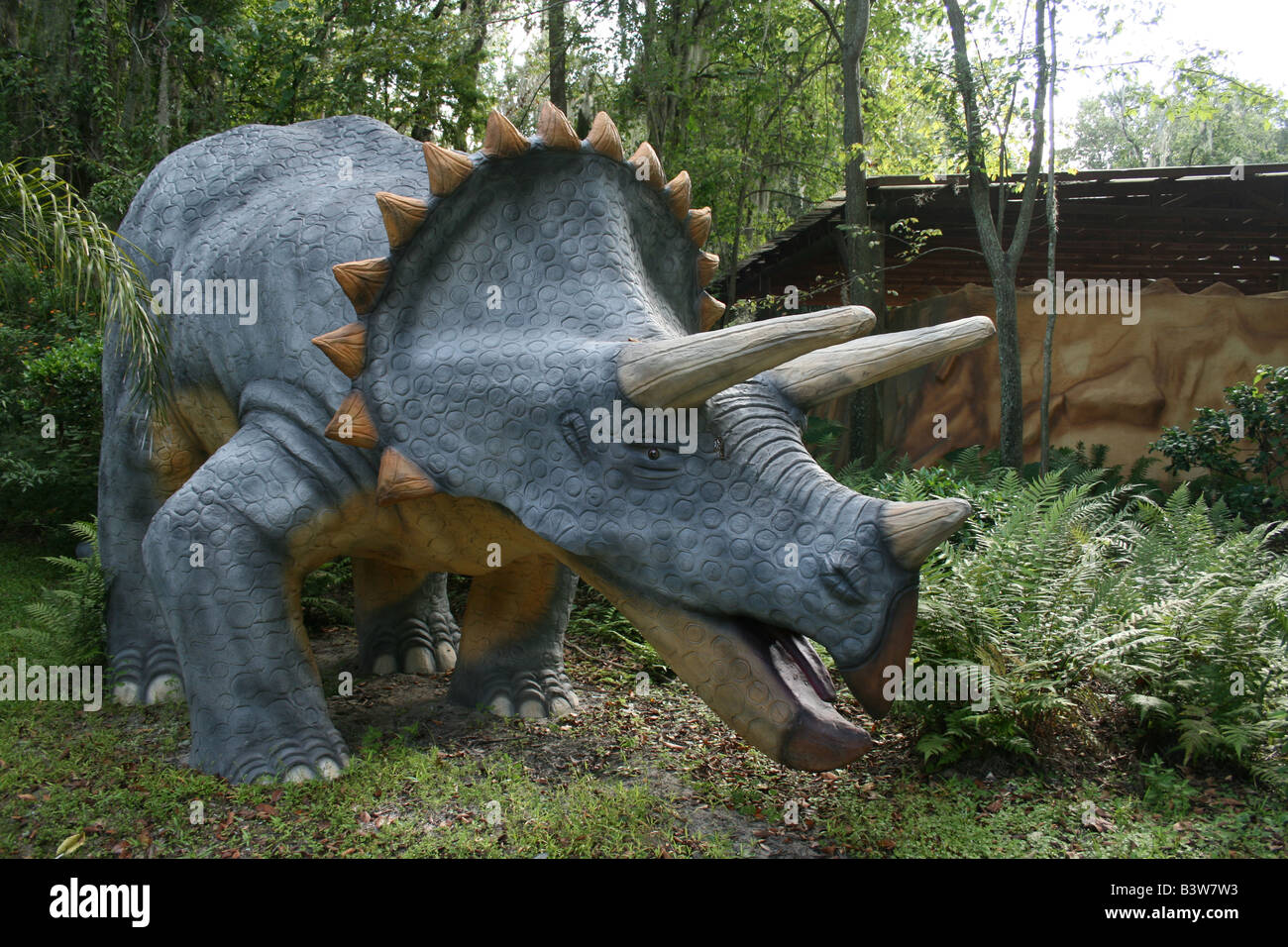Triceratops dinosaur at Dinosaur World, Plant City, FL. - Stock Image