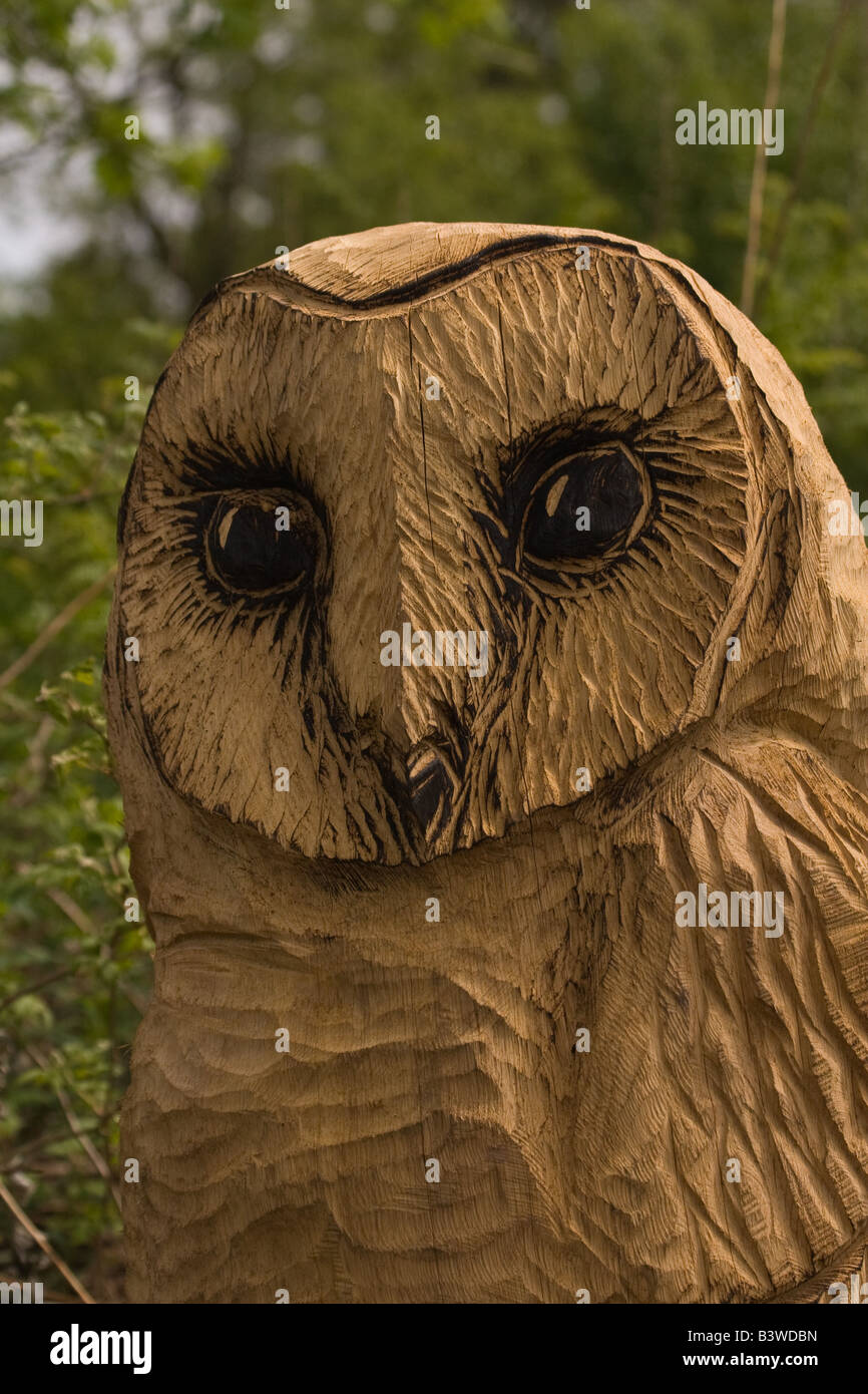 Chainsaw carving owl zeppy