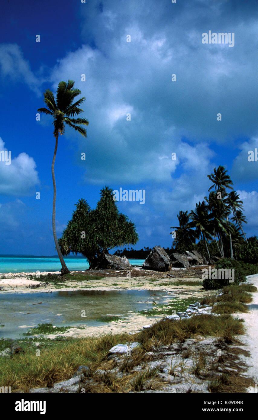 Oceania, Fanning Island, Kiribati. Lagoon with palm trees. - Stock Image