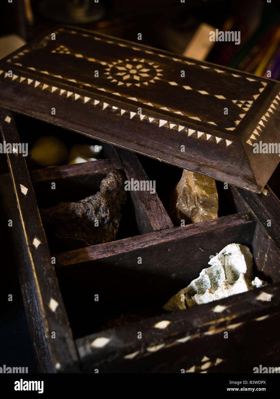 Ornate wooden box containing shells, stones and objet trouve - Stock Image