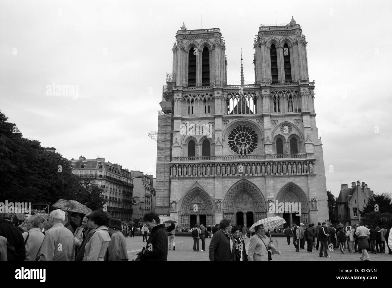 Tour Groups in front of Notre Dame Paris France Stock Photo