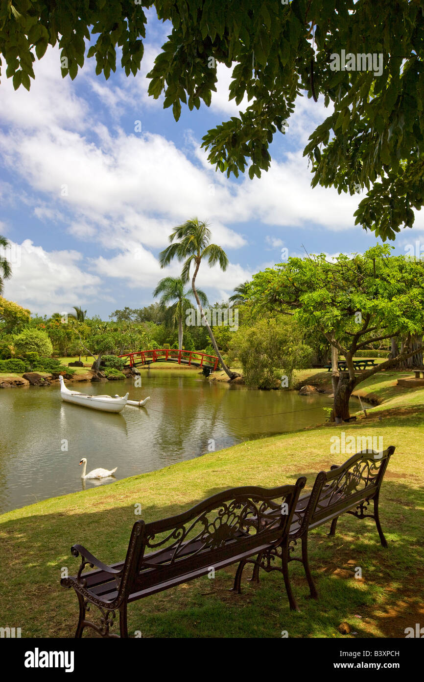 Two benches overlooking boat and swan on pond at Smith s Tropical Gardens Kauai Hawaii - Stock Image
