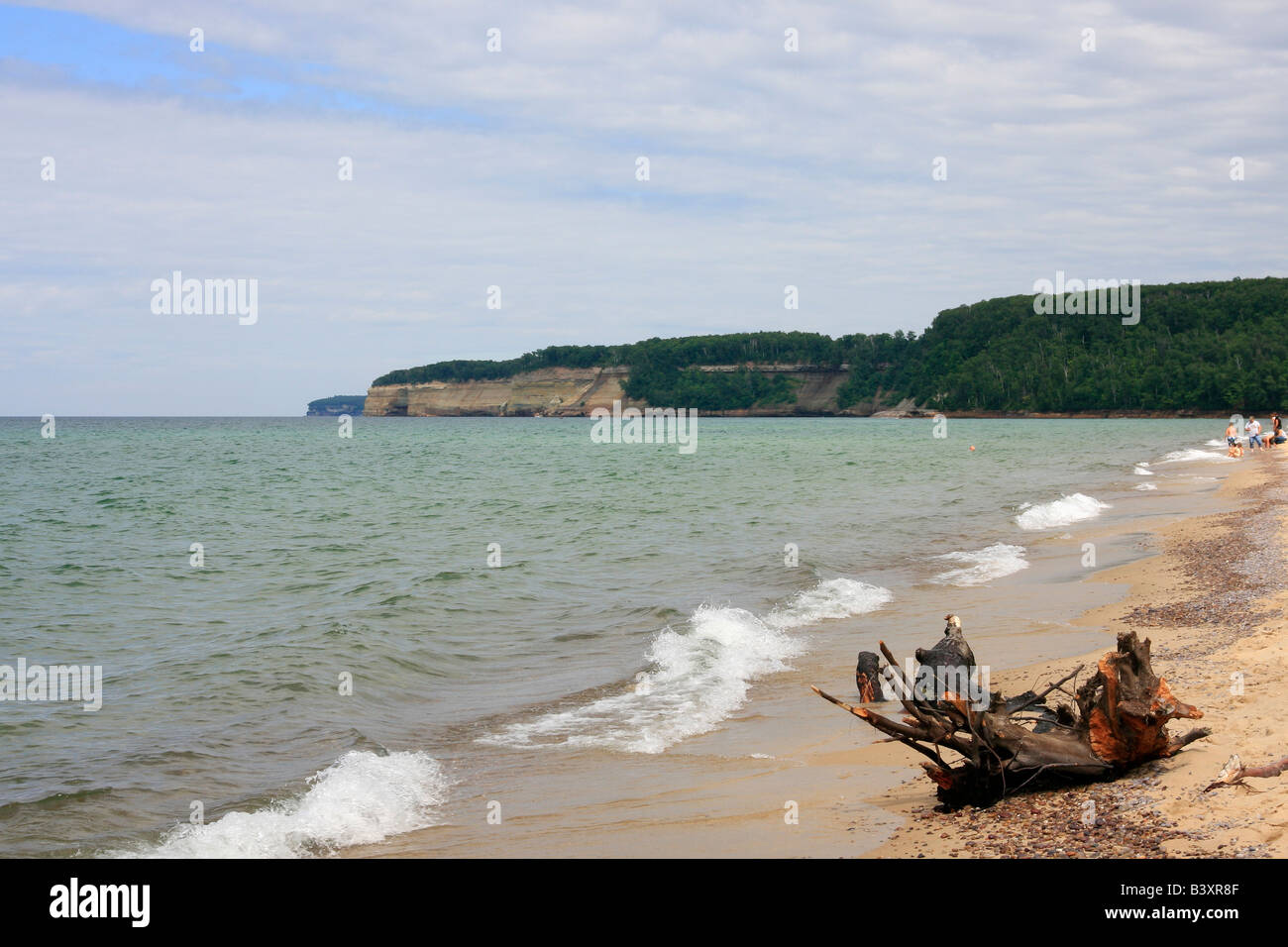 deserted destroyed devastation desolation destruction nature lake Superior beach Michigan summer colorful landscape - Stock Image