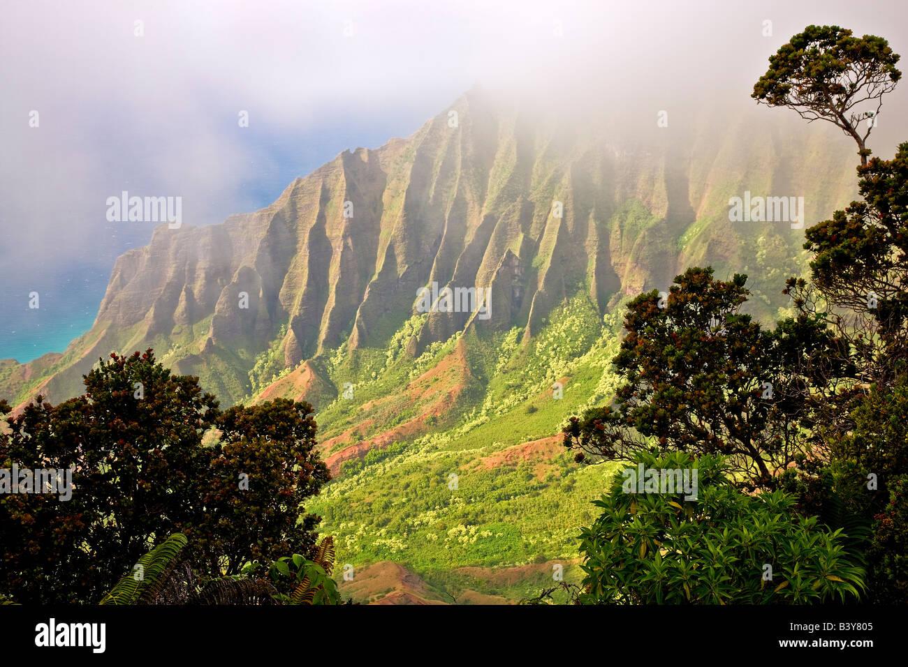 Kalalau Valley with fog Koke e State Park Waimea Canyon Kauai Hawaii - Stock Image