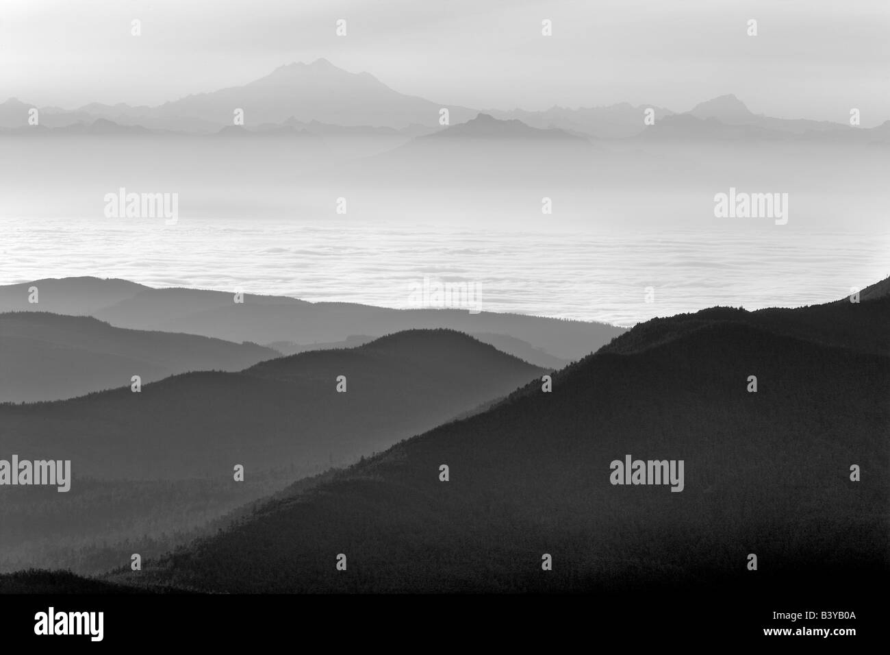 Sunrise and fog with Mt Baker Taken from Hurricane ridge Olympic National Park Washington - Stock Image