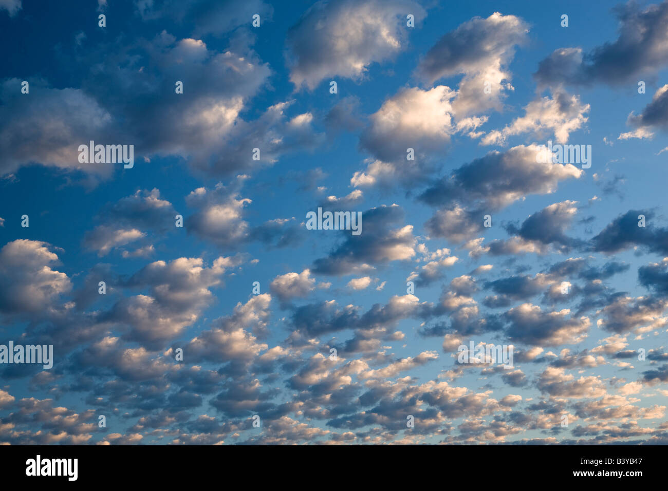 Puffy clouds Wallow County Oregon - Stock Image