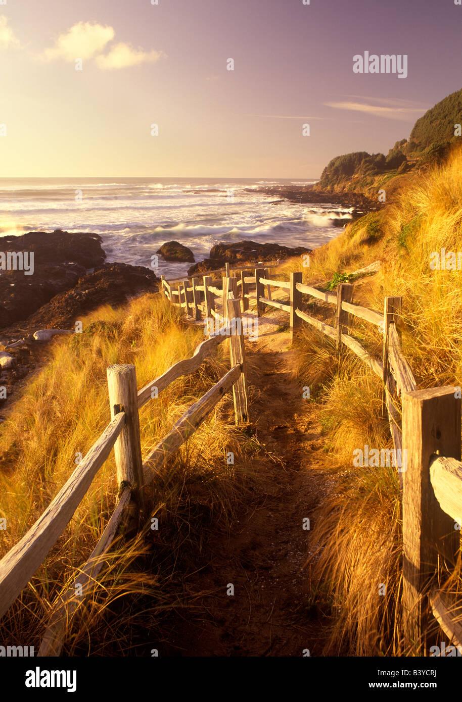 Pathway to beach Near Yachats Oregon - Stock Image