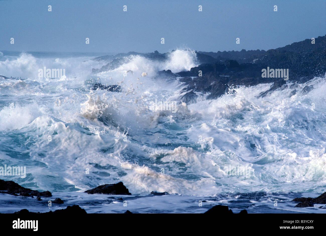 High waves during storm at Devil's Churn.  Oregon coast. Stock Photo