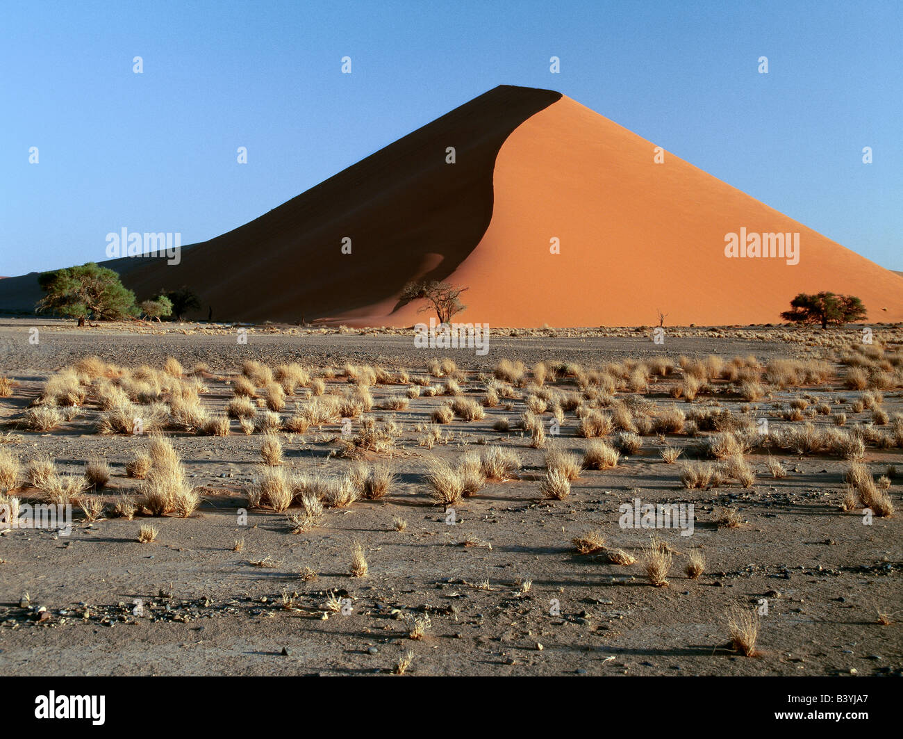 Namibia, Namib Desert, Sesriem. In early morning and late afternoon, the dunes at Sesriem in the Namib-Naukluft Stock Photo