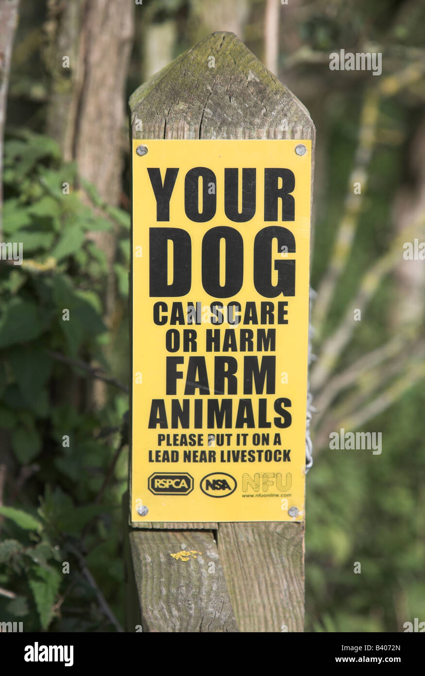 Your dog can scare or harm farm animals yellow sign - Stock Image
