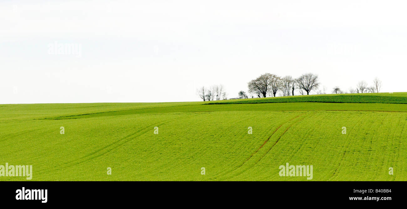 French countrside near Sancerre Loire Valley France - Stock Image