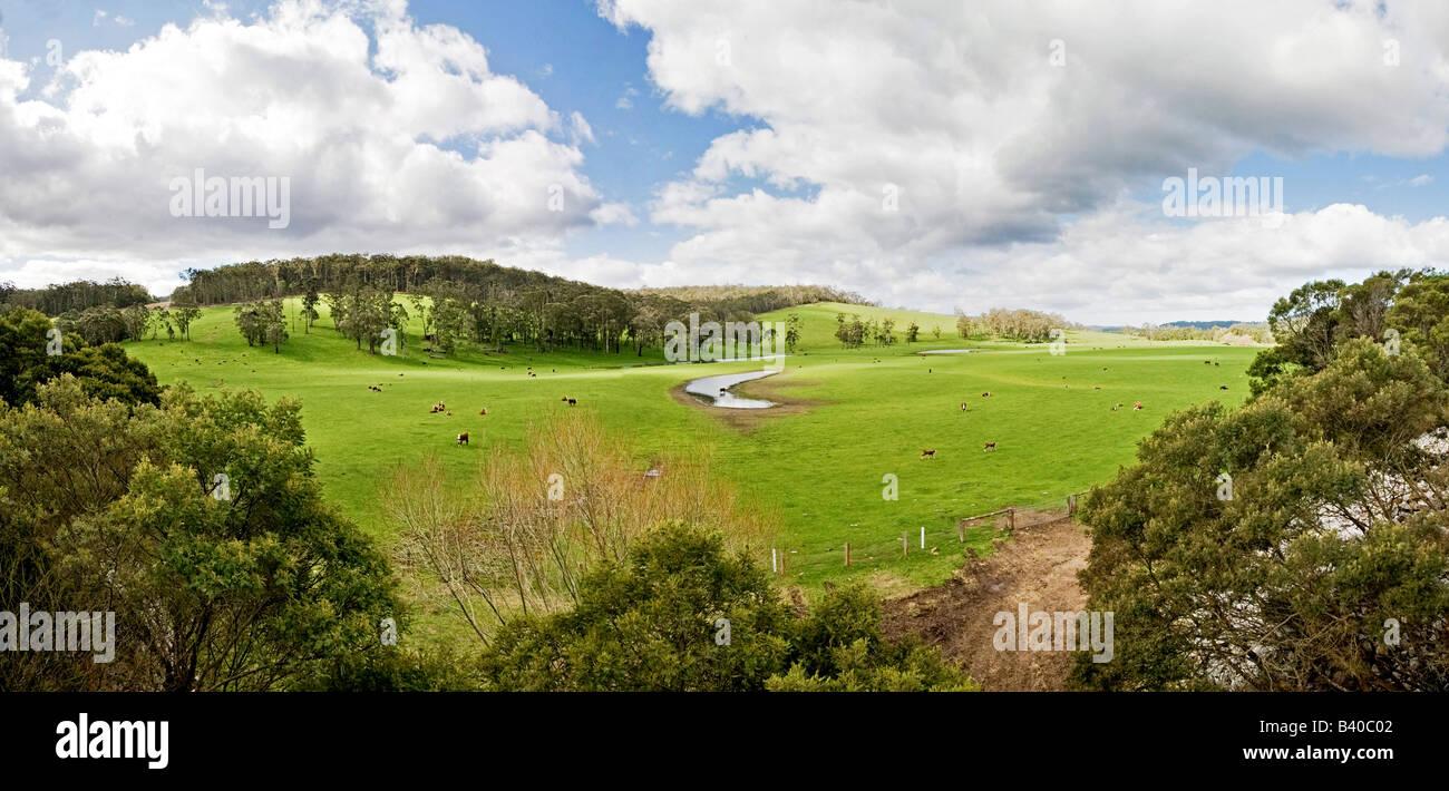 Farm in Towamba in rural New South Wales Australia - Stock Image