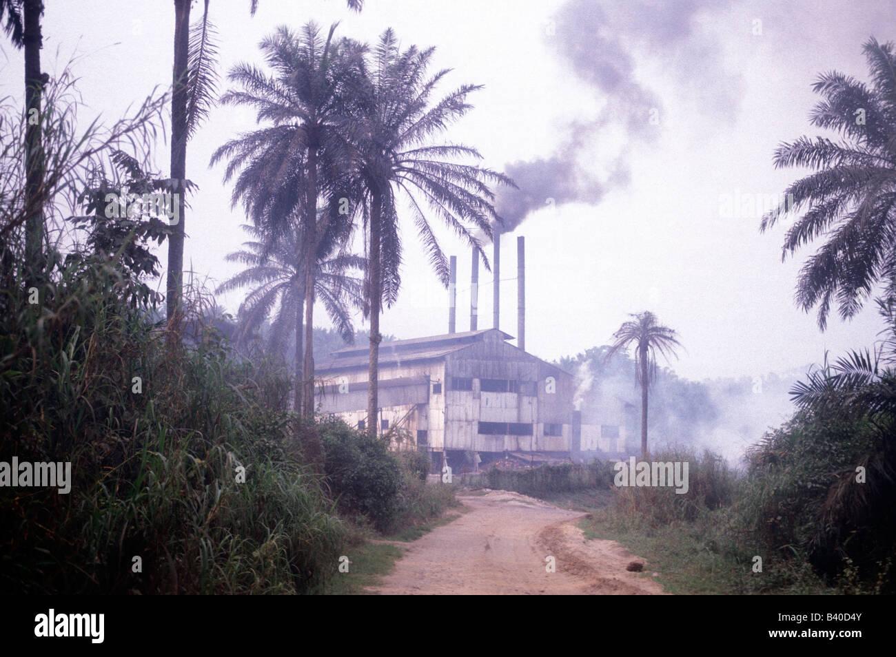 Unilever oil palm processing Kasai region Democratic Republic of Congo - Stock Image
