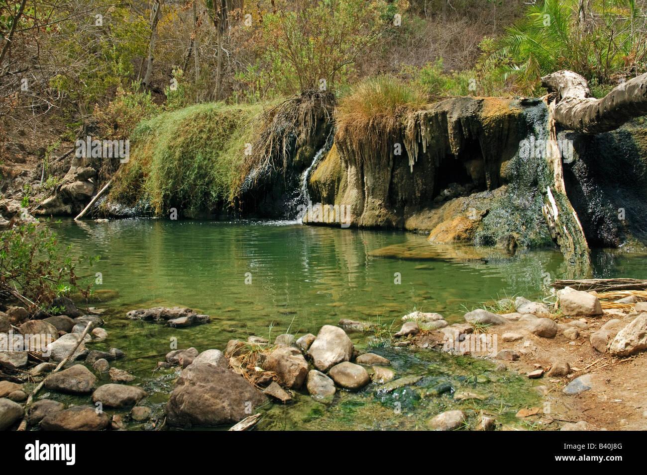 Maji Moto Hot springs at Selous Game Reserve Tanzania - Stock Image