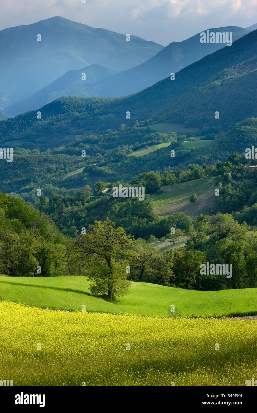 spring in the Valnerina near Meggiano, Umbria, Italy Stock Photo