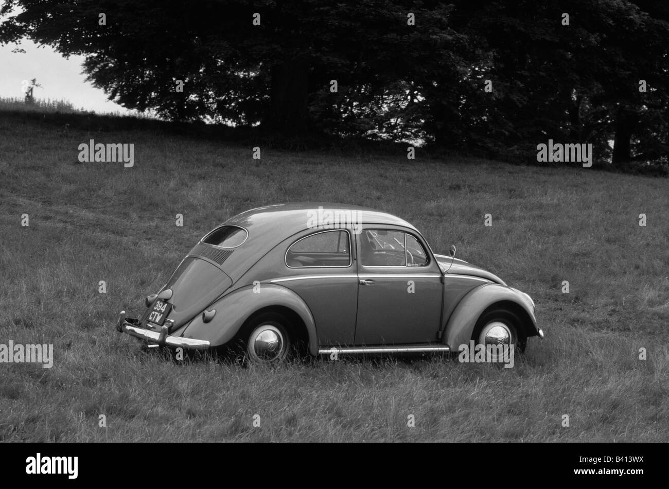 Volkswagen Beetle 1200 of 1955. car auto classic retro - Stock Image