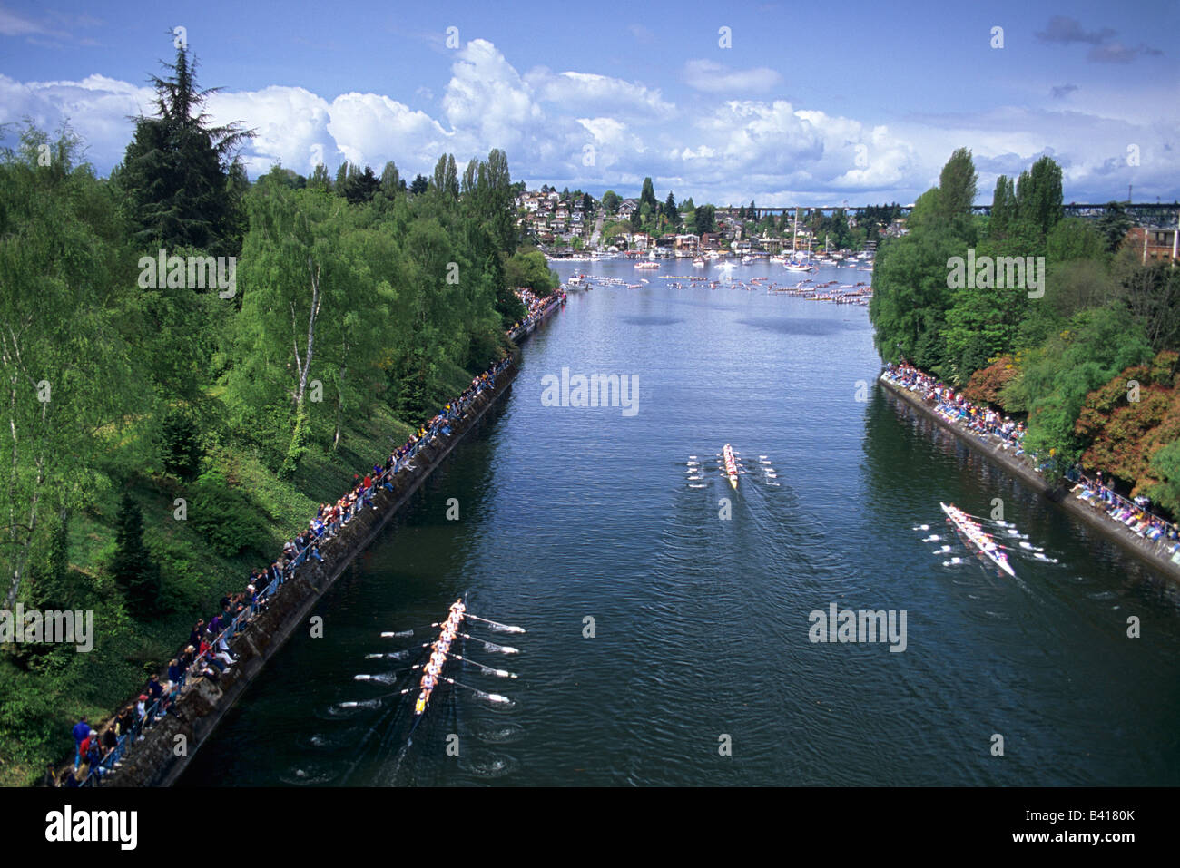 WA, Seattle, Windermere Cup Races at Montlake Cut; opening of boating season - Stock Image