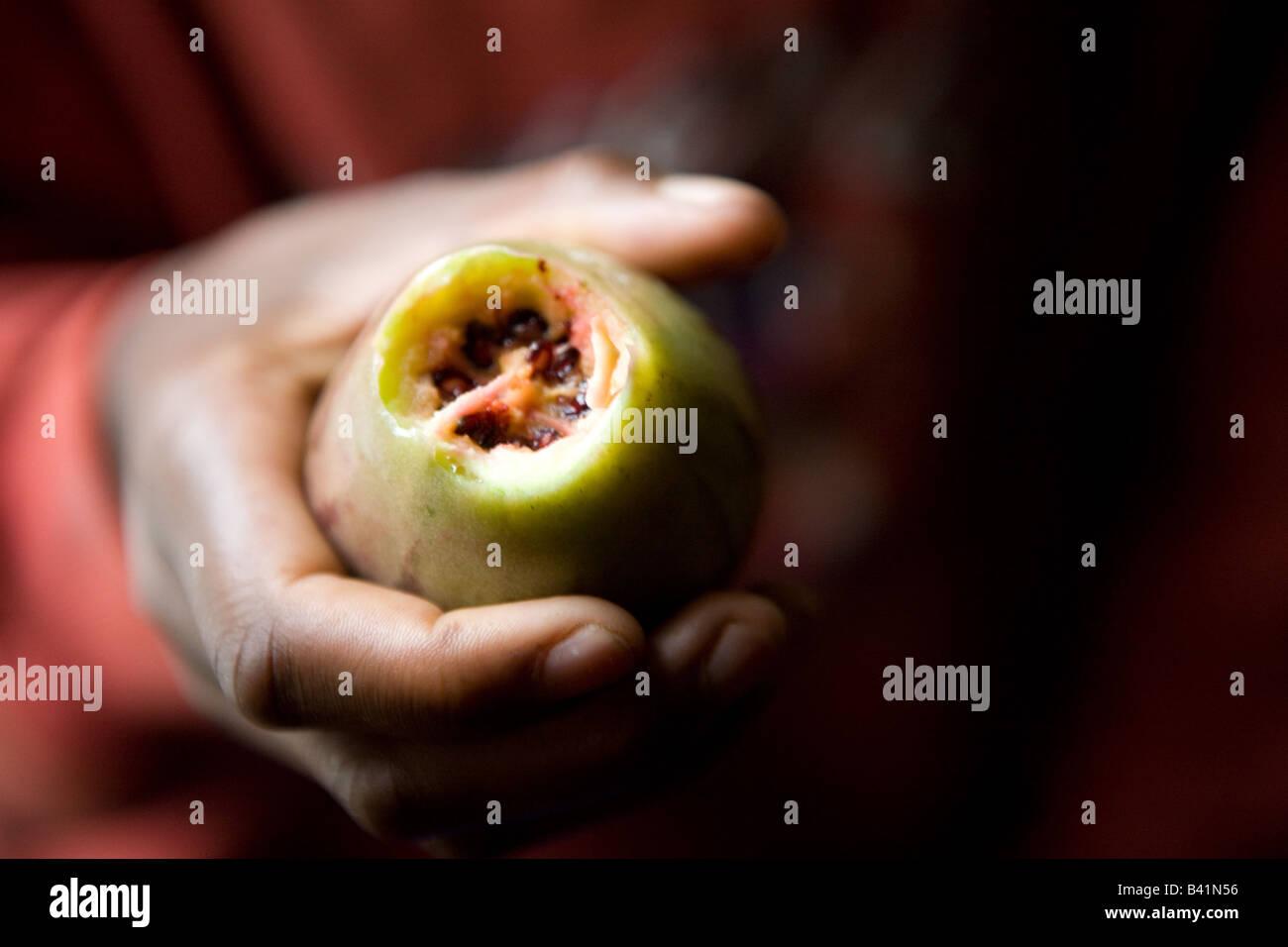 A young Rwandan girl eats a favorite fruit. - Stock Image