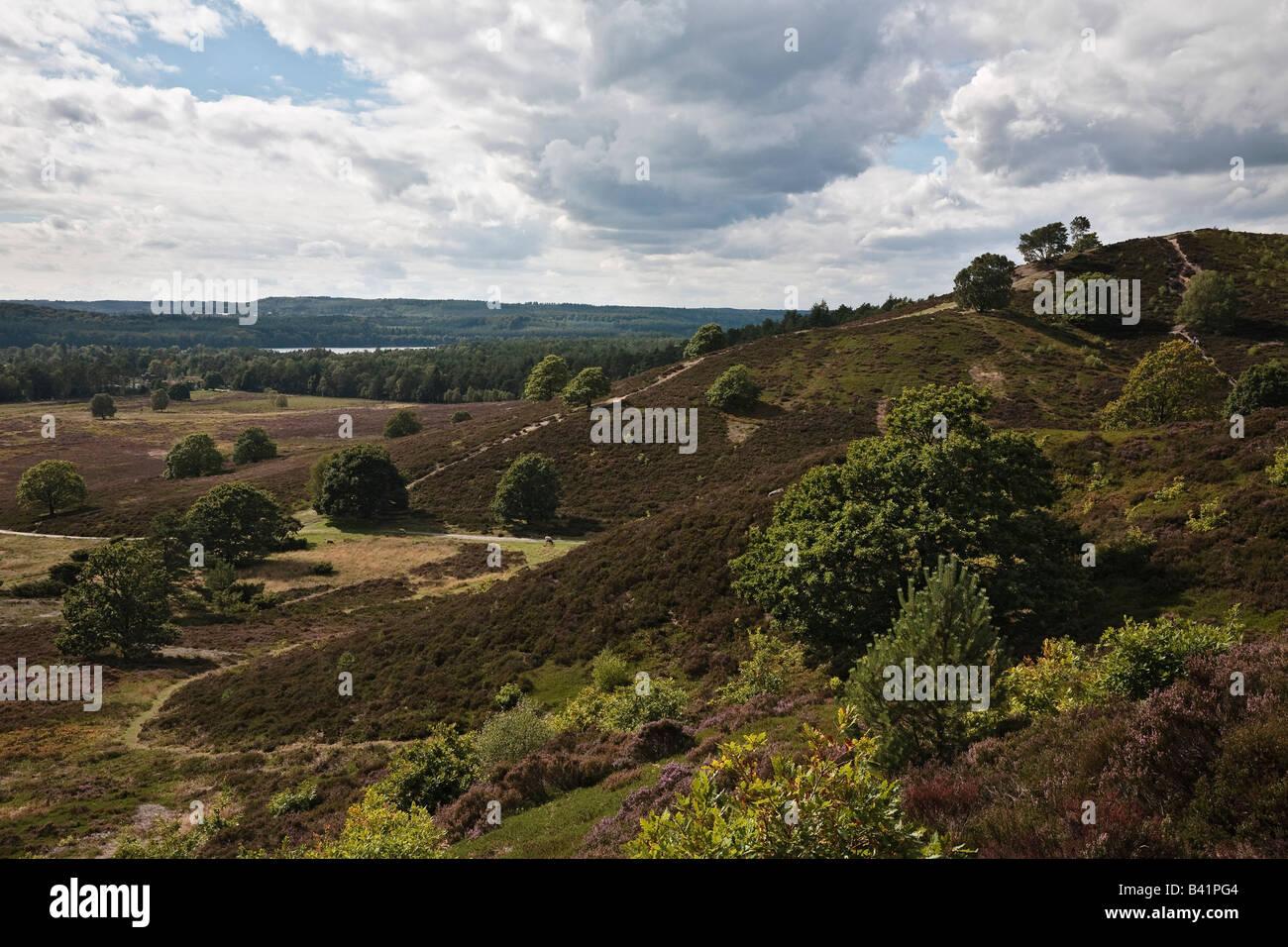 Stovbjerg hill and view to Sindbjerg hill and Lake Brassø, near Sejs, Jutland, Denmark - Stock Image