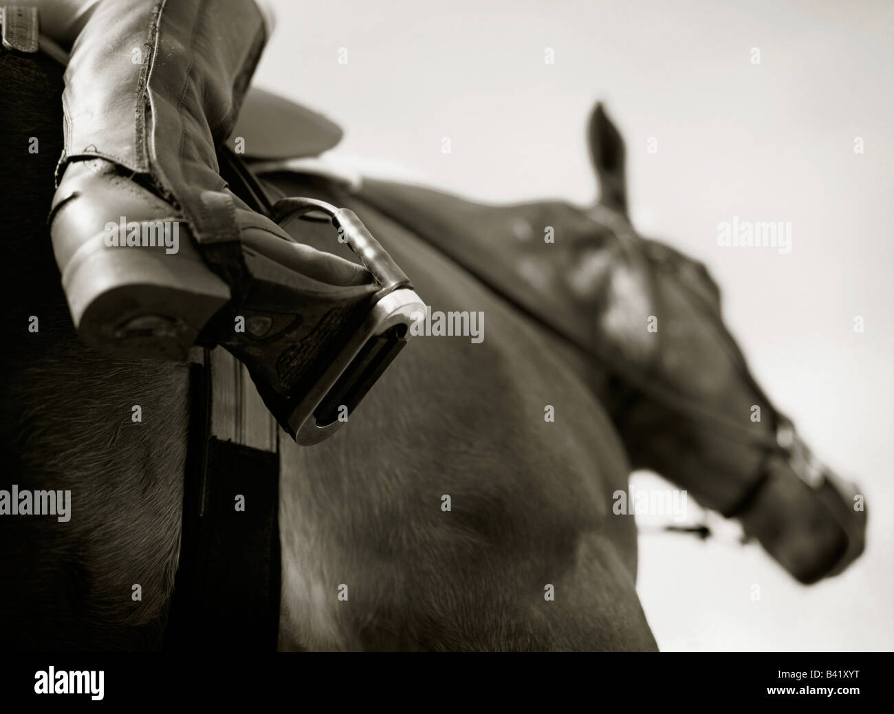 A rider's boot is resting in the stirrup of an English saddle. - Stock Image