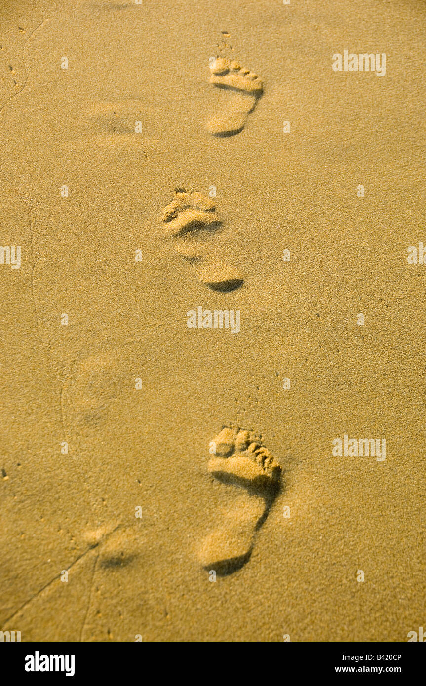 footsteps in sand - Stock Image